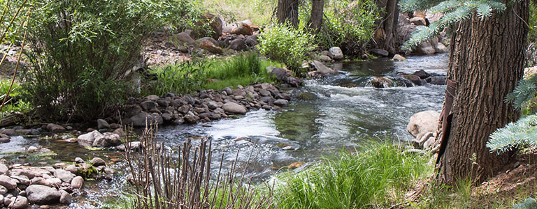 shallow-creek-page-header-mobile