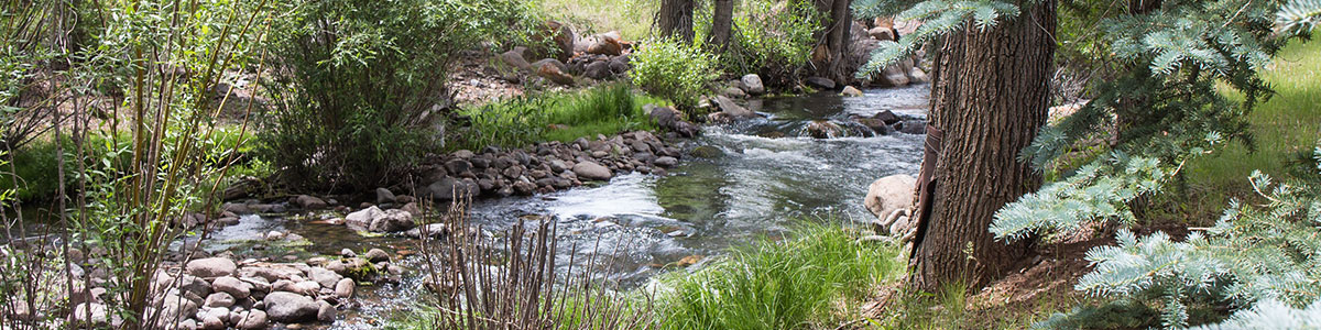 shallow-creek-page-header